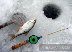 Ловля плотвы зимой на Ахтубе