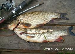Рыбалка 69. Тверская область