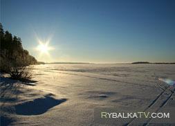 Ловля налима со льда. Река Молога