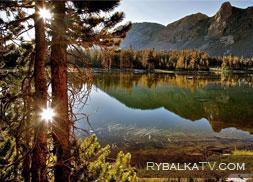 Таежные озера