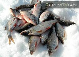 Истринское водохранилище. Рыбалка по последнему льду
