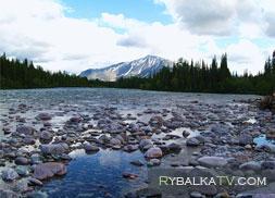 Притоки реки Кара