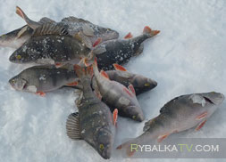 Рыбалка на озере Бойково. Зима
