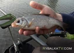 рыбалка с константином кузьминым