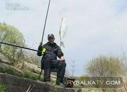 Ловля белой рыбы на озере Сенеж. Часть 2