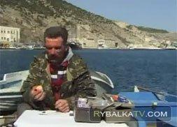 Морской окунь в Крыму