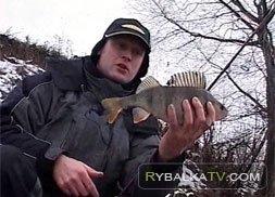 Рыболовная мода