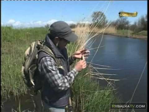 рыбалка в ростове на дону в конце