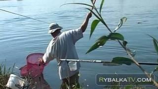 «Айда на рыбалку!». Лето. Июль