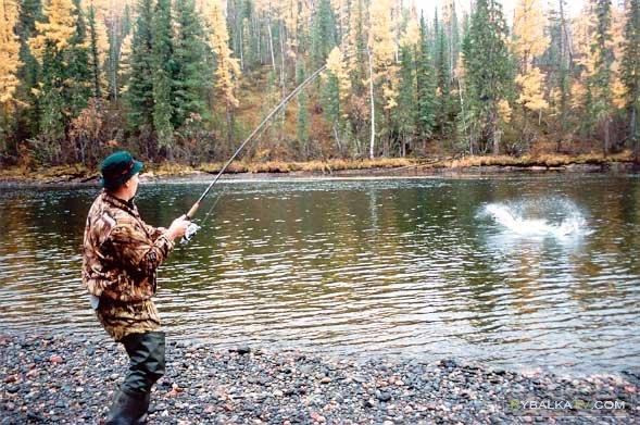 Ловля рыбы нахлыстом. Осень
