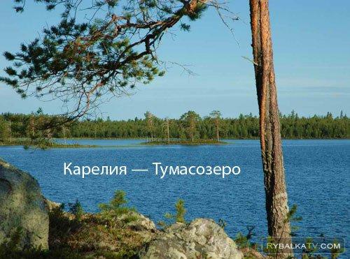 Карелия. Тумасозеро