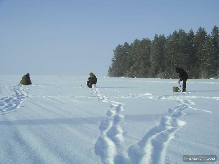 Рыбалка на озере Бардово