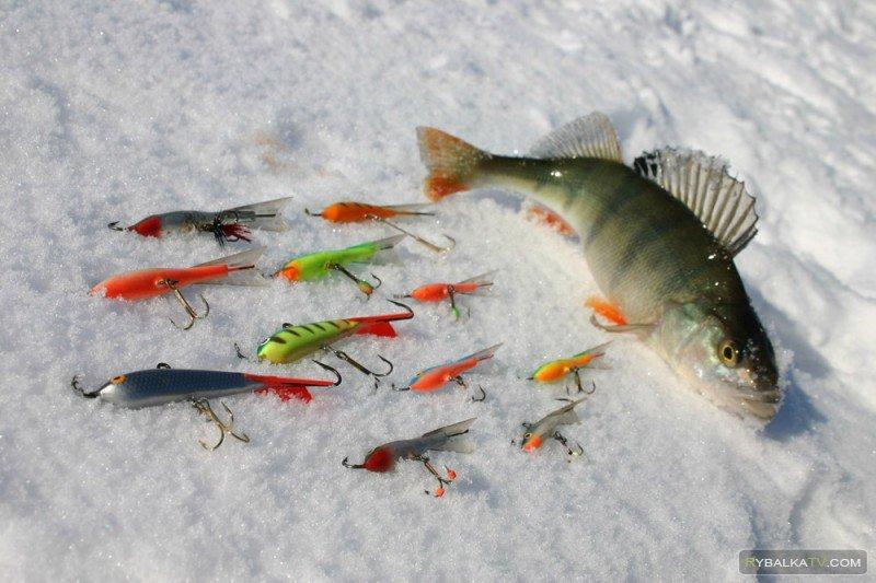 Секреты рыболовства. Выпуск 13
