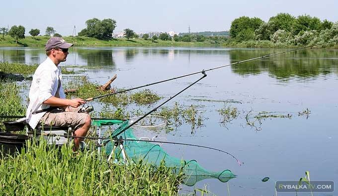 Ловля белой рыбы пикером на пруду