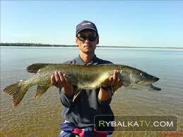 Рыбалка на реке Нимгеркан Якутия 2011г.