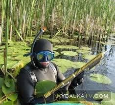 Приключение рыбака и охотника. Подводная охота на Кучурганском водохранилище