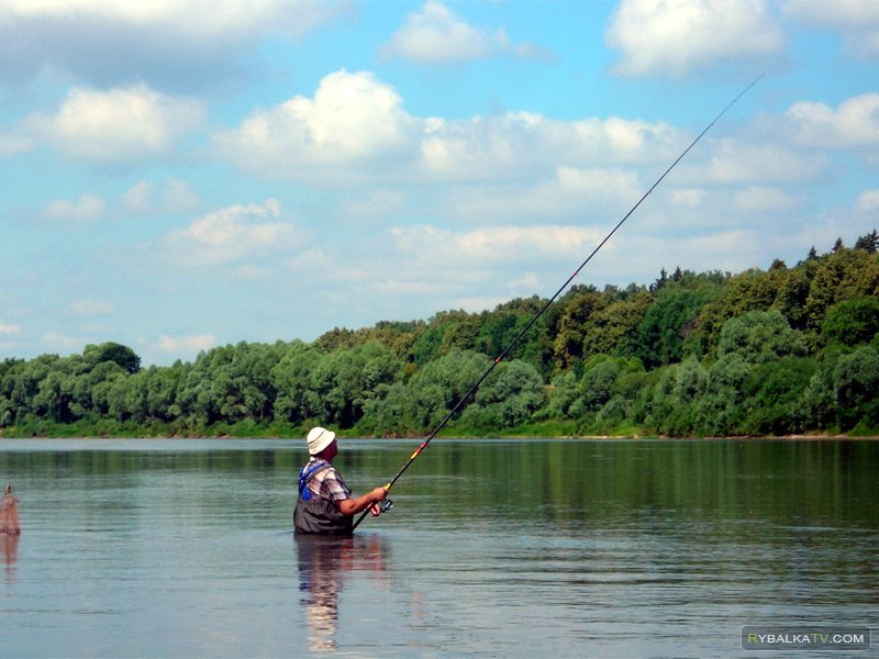 Рыбалка с поплавочной удочкой