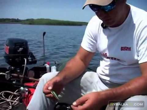 Ловля щуки и окуня с лодки