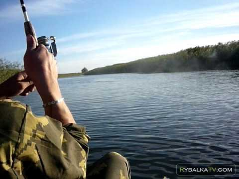 Река Белая, Ростовская область. Ловля щуки на спиннинг