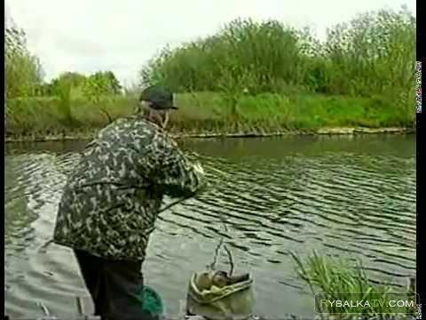Летняя рыбалка. Ловля карпа с поплавком