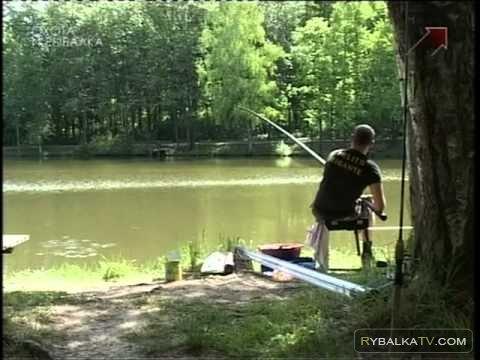 Рыболовное хозяйство усадьбы Узкое