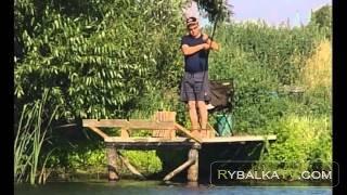 Рыбак Рыбаку. Красавец линь