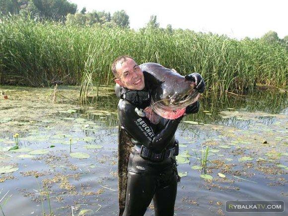 Приключение рыбака и охотника. Подводная охота на сома
