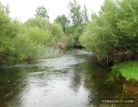 Простые радости. Рыбалка на реке Тогузак