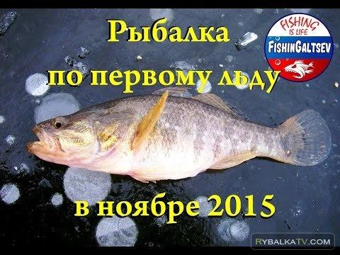 FishinGaltsev. Рыбалка по первому льду в ноябре 2015