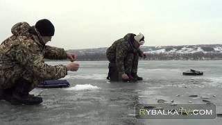 Ловля плотвы зимой на Филевской пойме