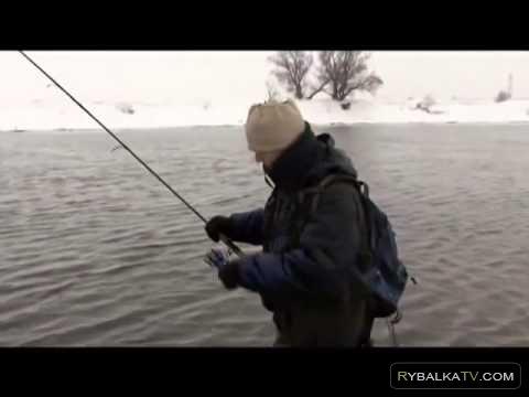 Ловля спиннингом зимой на отводной поводок и воблеры на Москве реке с Андреем Питерцовым