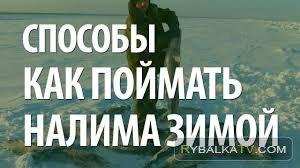 Зимняя рыбалка. Как ловить налима. Советы