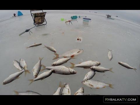 NRG FISHING. Ловля плотвы зимой в селе Максимовка