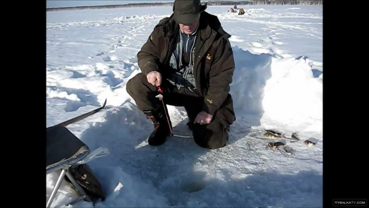 Владимир Кукуев. Рыбалка на Кременчугском водохранилище