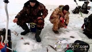 Ловля на Яузе по последнему льду