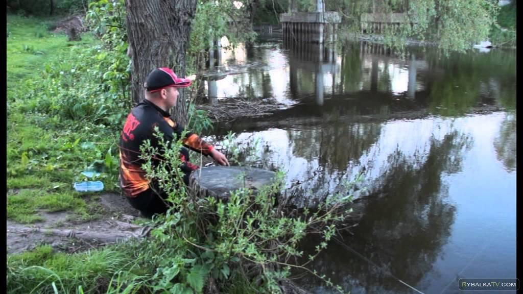 Дмитрий Корзенков. Весенний голавль на малых реках