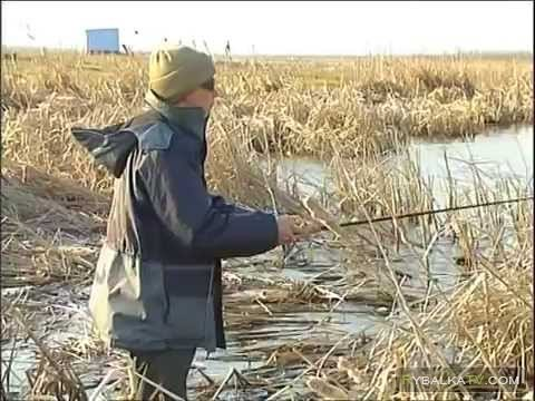 Рыбак рыбаку. За щукой весной