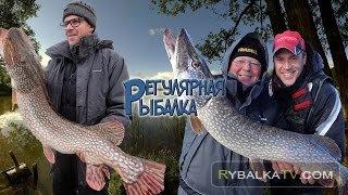 Регулярная рыбалка. Летняя жаркая рыбалка в Астрахани 2015