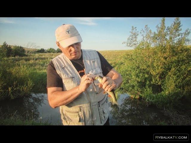 Школа рыболова. Ловля голавля и щуки на спиннинг
