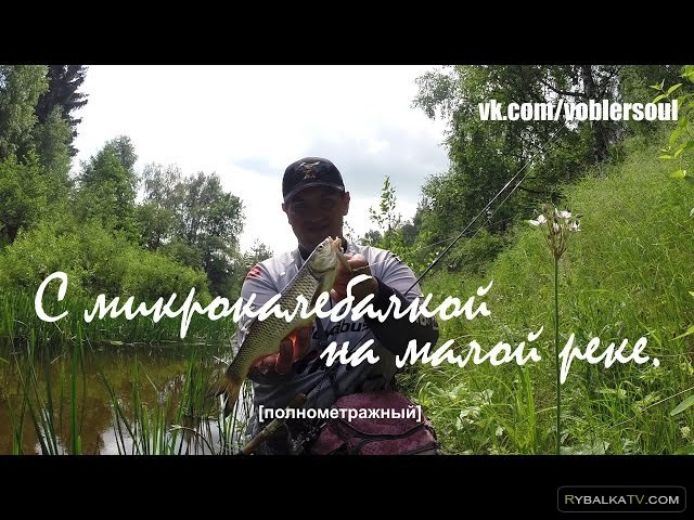 Александр Тупицын. Летом с микроколебалкой на малой реке