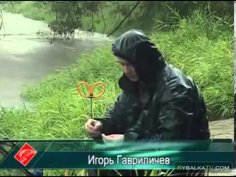 Ловля поплавочной удочкой на Москве-реке