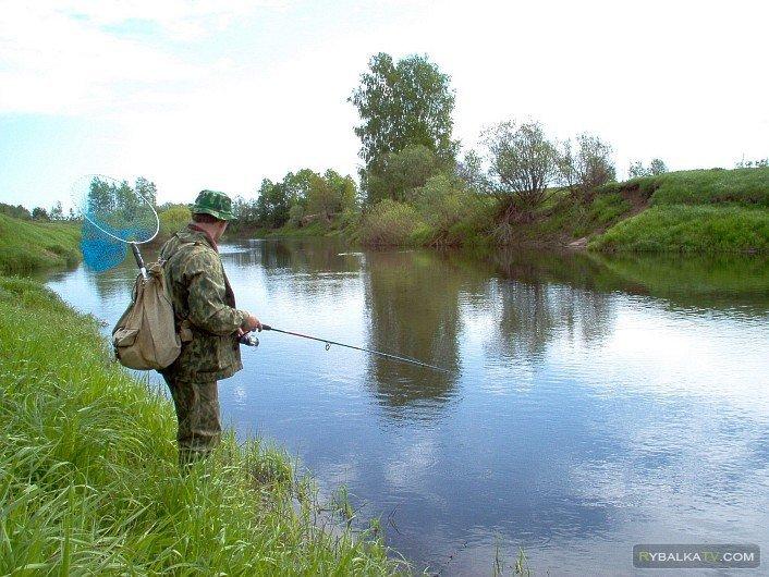 Рыбак рыбаку. Щука малых рек