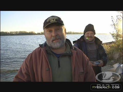 «Рыбацкие байки» 30.10.2015. Подводная охота в Переволоках