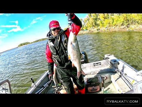 Регулярная рыбалка. Рыбалка Астрахань осень 2015. 4 части